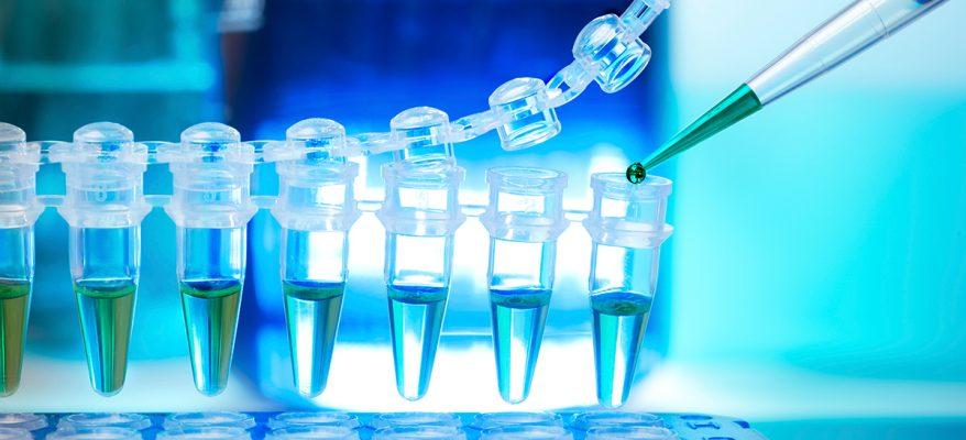 laurea in ingegneria biomedica Unicusano